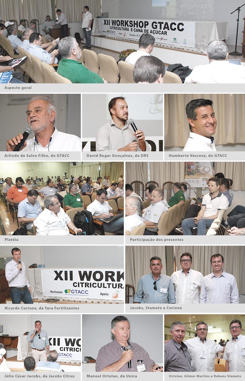 XII Workshop GTACC – Citricultura e Cana de Açúcar