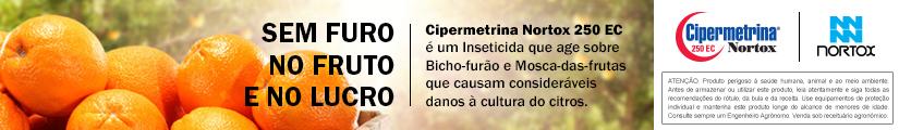 Nortox Cipermetrina Inseticida