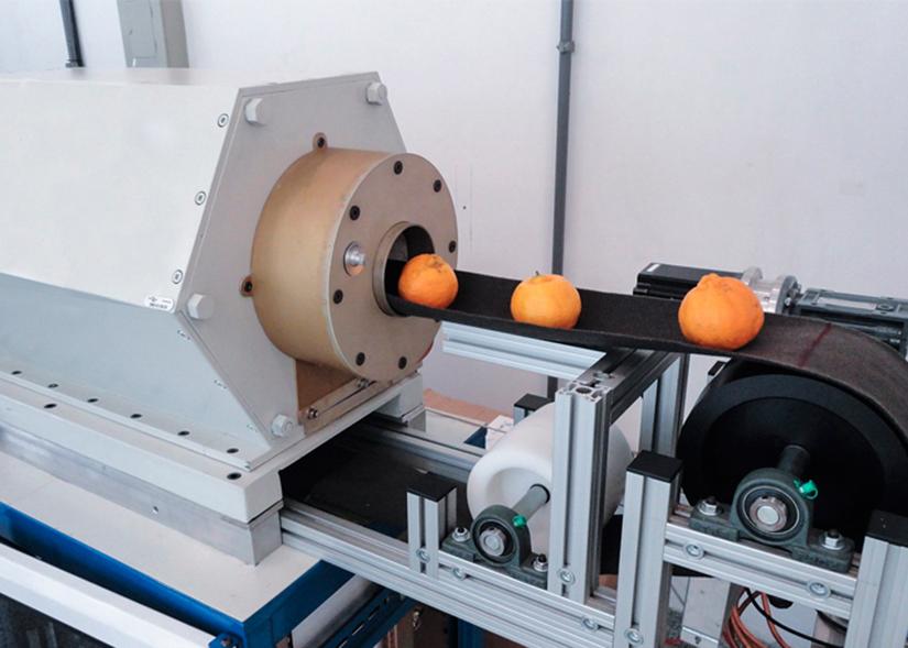 Equipamento RMN de baixo campo permite a análise da qualidade interna da fruta sem danificá-la. Foto Joana Silva, Embrapa Instrumentação